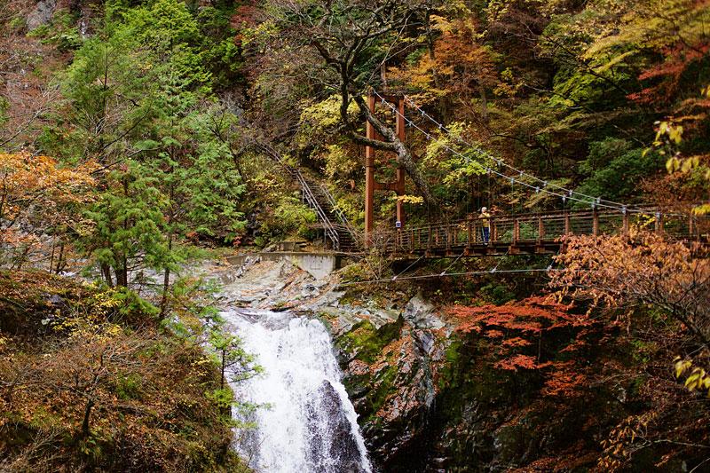 みたらい渓谷:大小の滝がおりなす渓谷美、紅葉の名所としても有名です。遊歩道は洞川温泉までつづきます